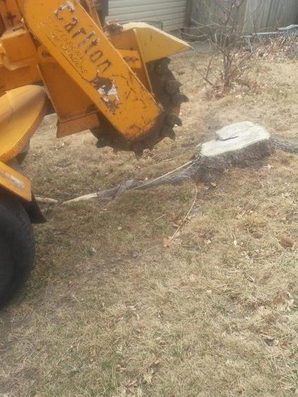 Stump Removal Service Des Moines, Iowa