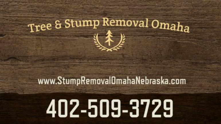 Tree & Stump Removal Omaha